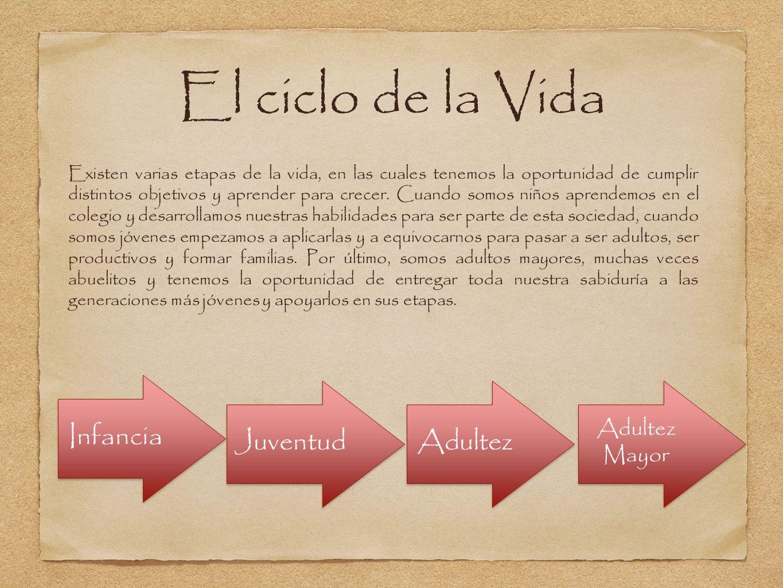El ciclo de la Vida Infancia Juventud Adultez Adultez Mayor
