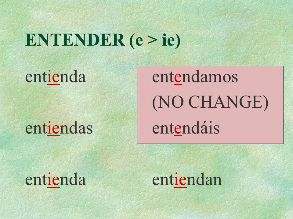 ENTENDER (e > ie) entienda entiendas entendamos (NO CHANGE) entendáis entiendan