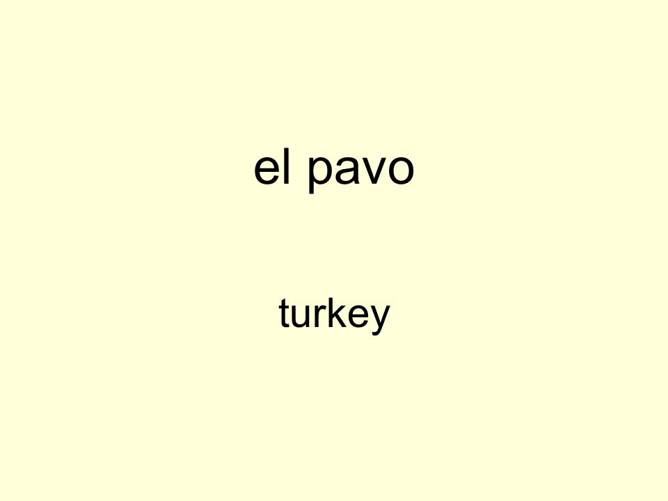 el pavo turkey