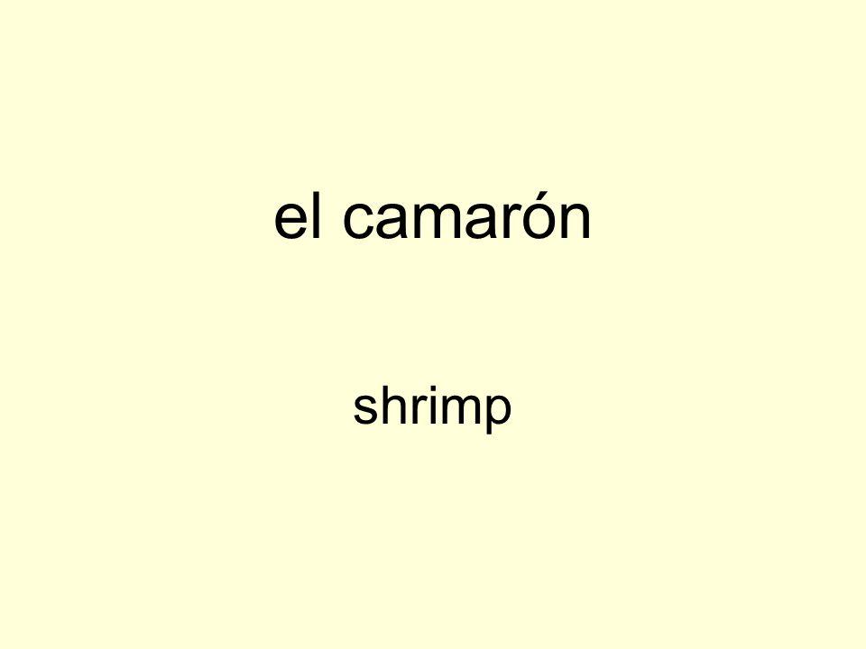 el camarón shrimp