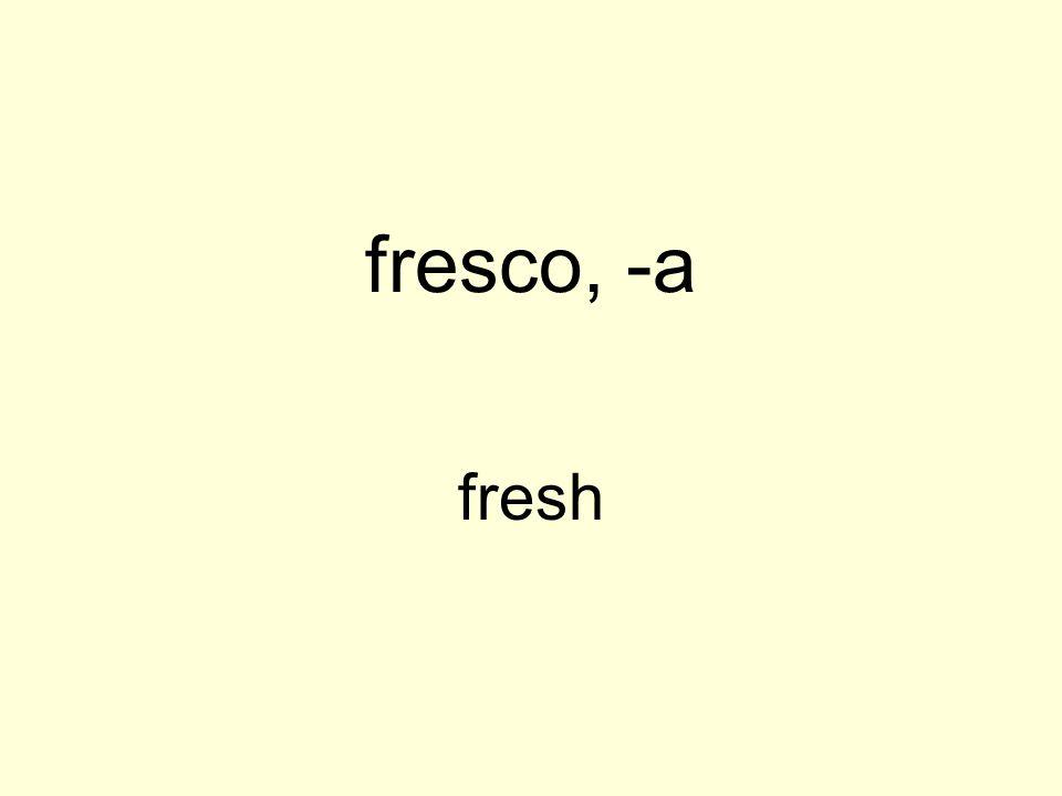 fresco, -a fresh