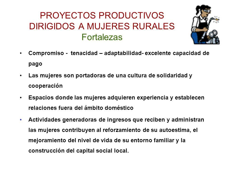 PROYECTOS PRODUCTIVOS DIRIGIDOS A MUJERES RURALES Fortalezas
