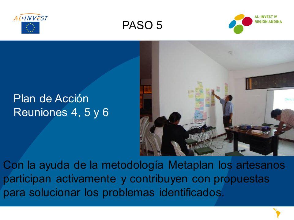 PASO 5 Plan de Acción. Reuniones 4, 5 y 6.