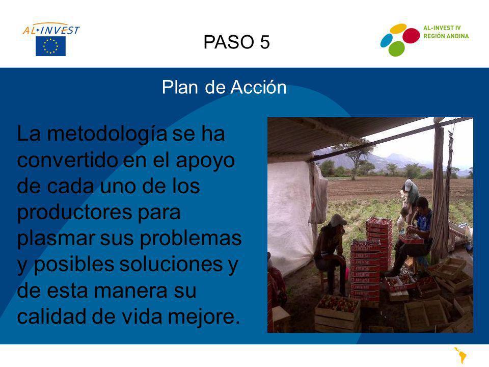 PASO 5 Plan de Acción.