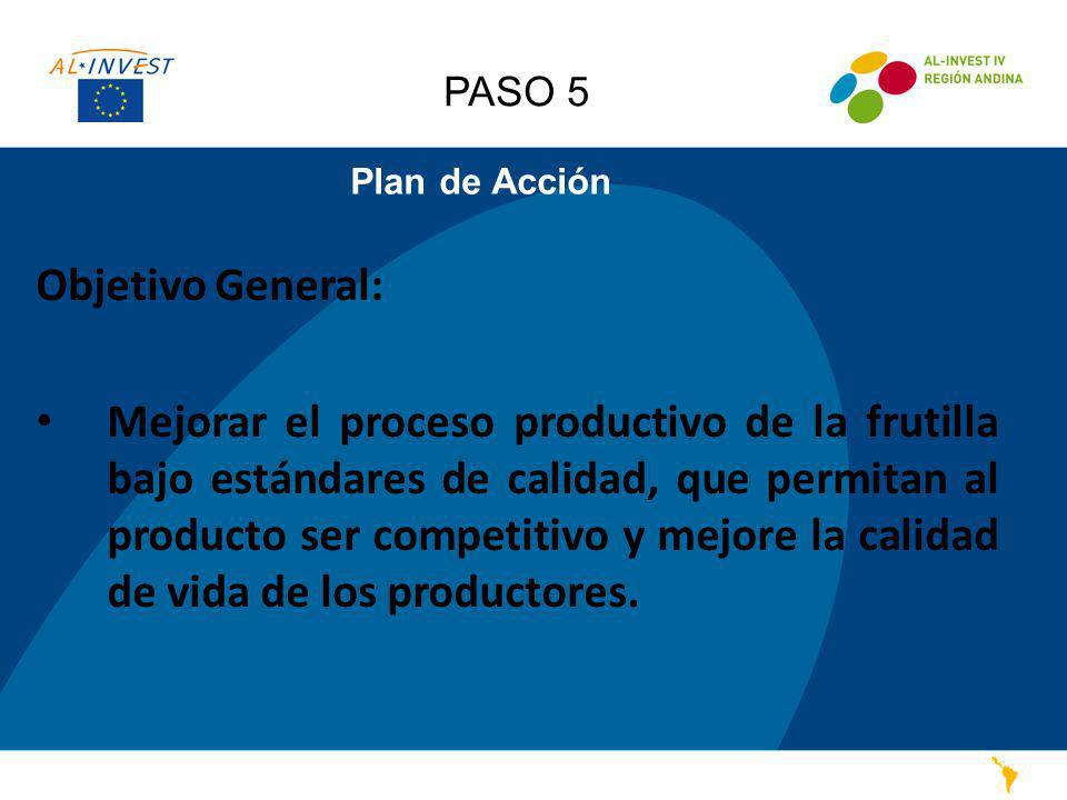 PASO 5 Plan de Acción. Objetivo General: