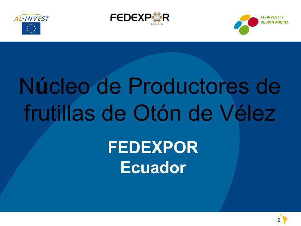 Núcleo de Productores de frutillas de Otón de Vélez