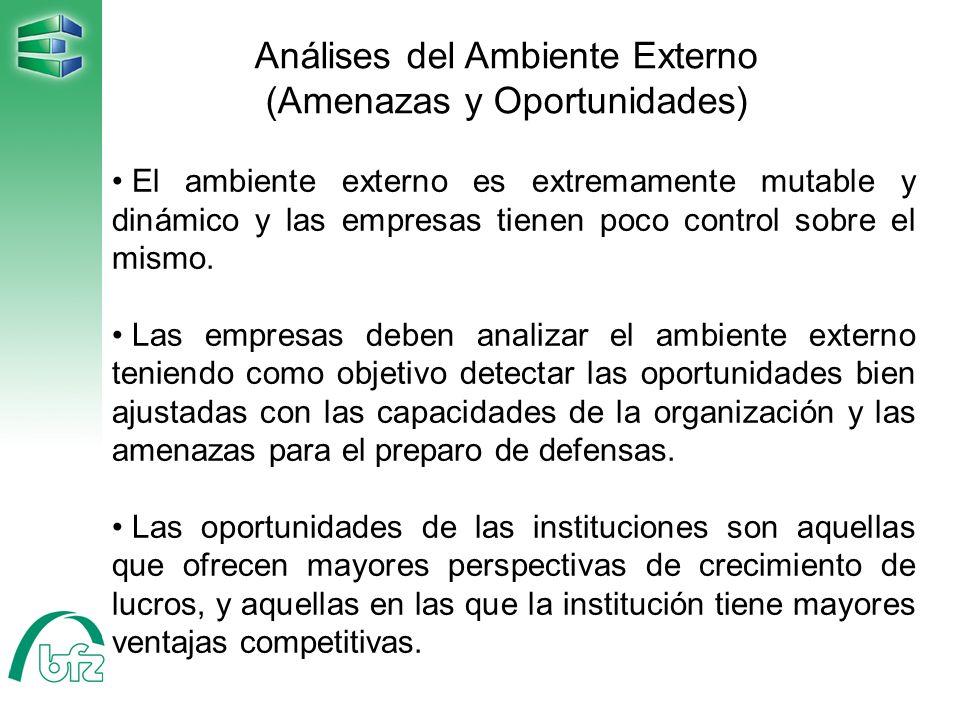 Análises del Ambiente Externo (Amenazas y Oportunidades)