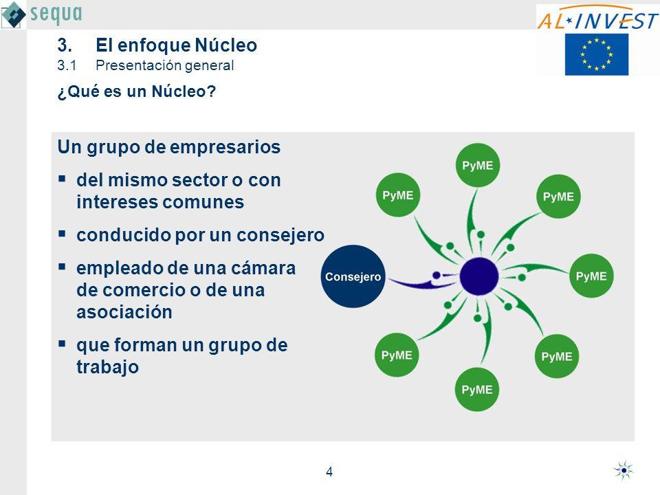 3. El enfoque Núcleo 3.1 Presentación general