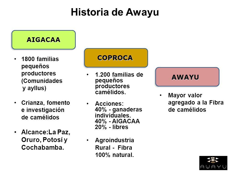 Historia de Awayu AIGACAA AIGACAA COPROCA AWAYU