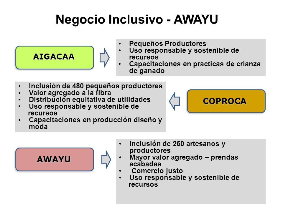 Negocio Inclusivo - AWAYU