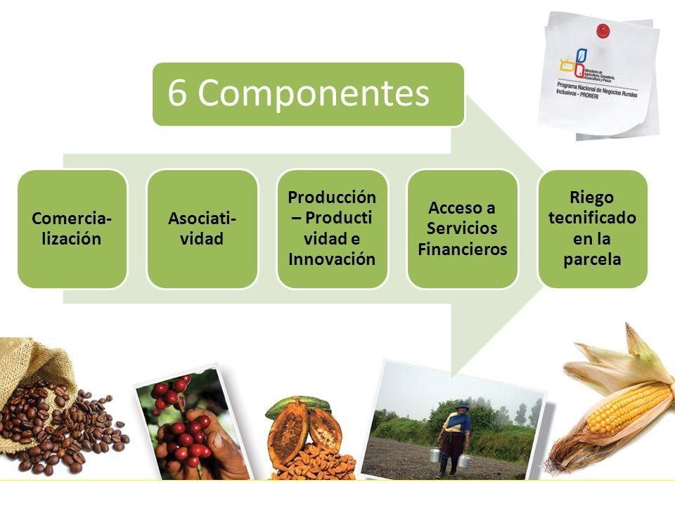 6 Componentes Comercia- lización Asociati- vidad