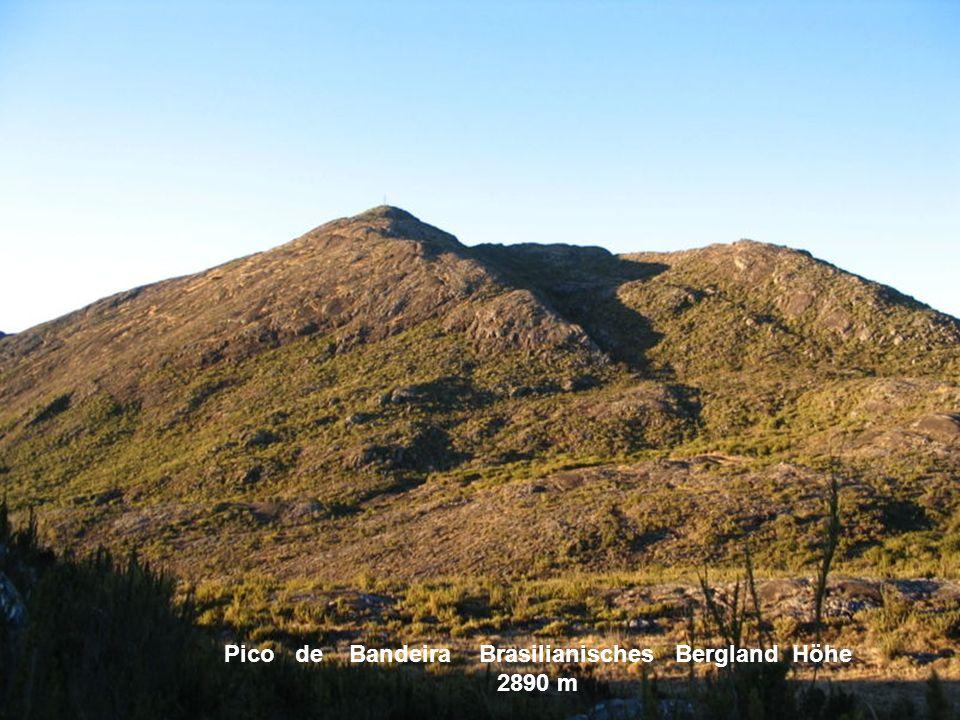 Pico de Bandeira Brasilianisches Bergland Höhe 2890 m