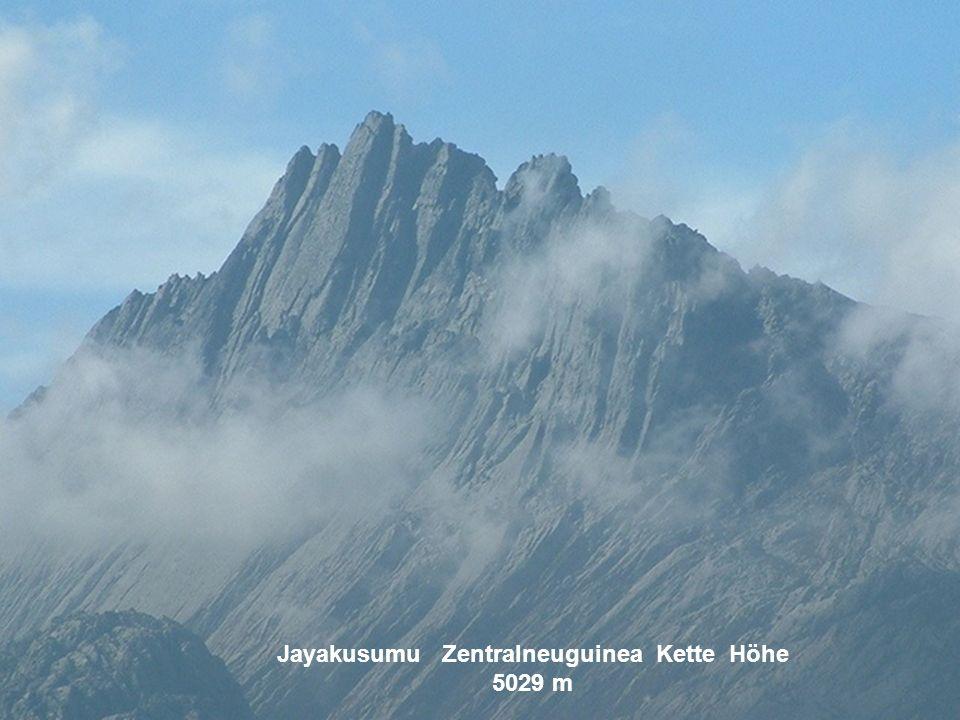 Jayakusumu Zentralneuguinea Kette Höhe 5029 m