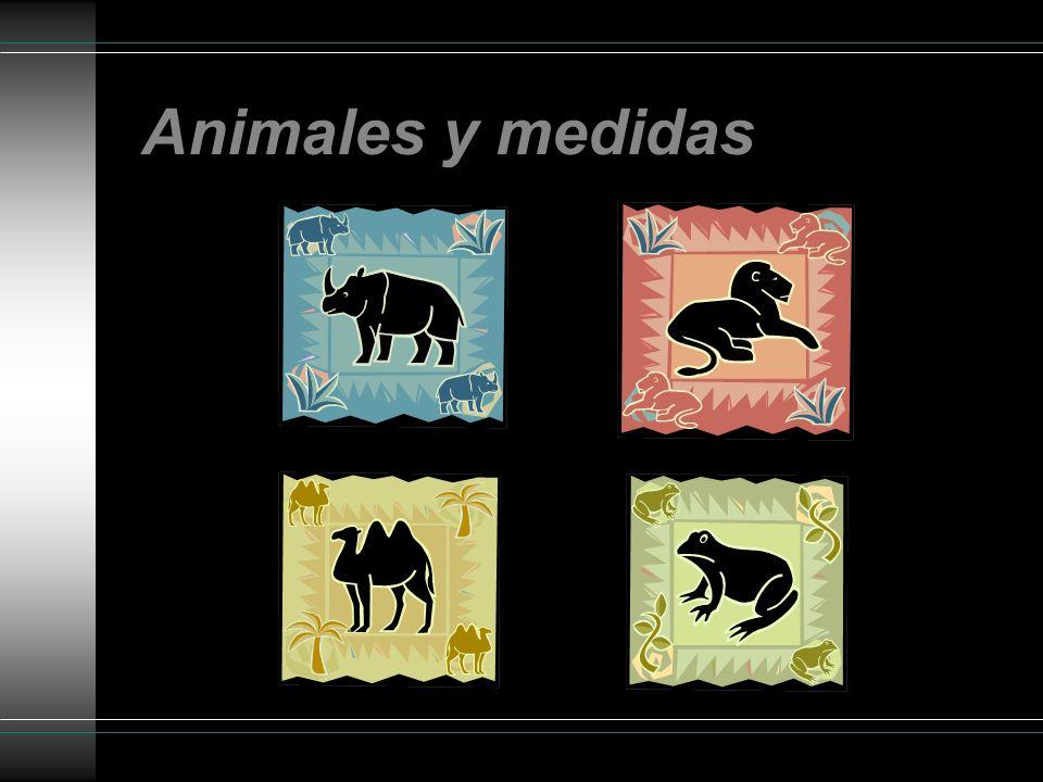 Animales y medidas