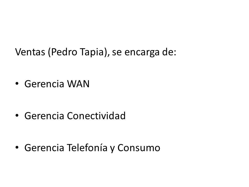 Ventas (Pedro Tapia), se encarga de: