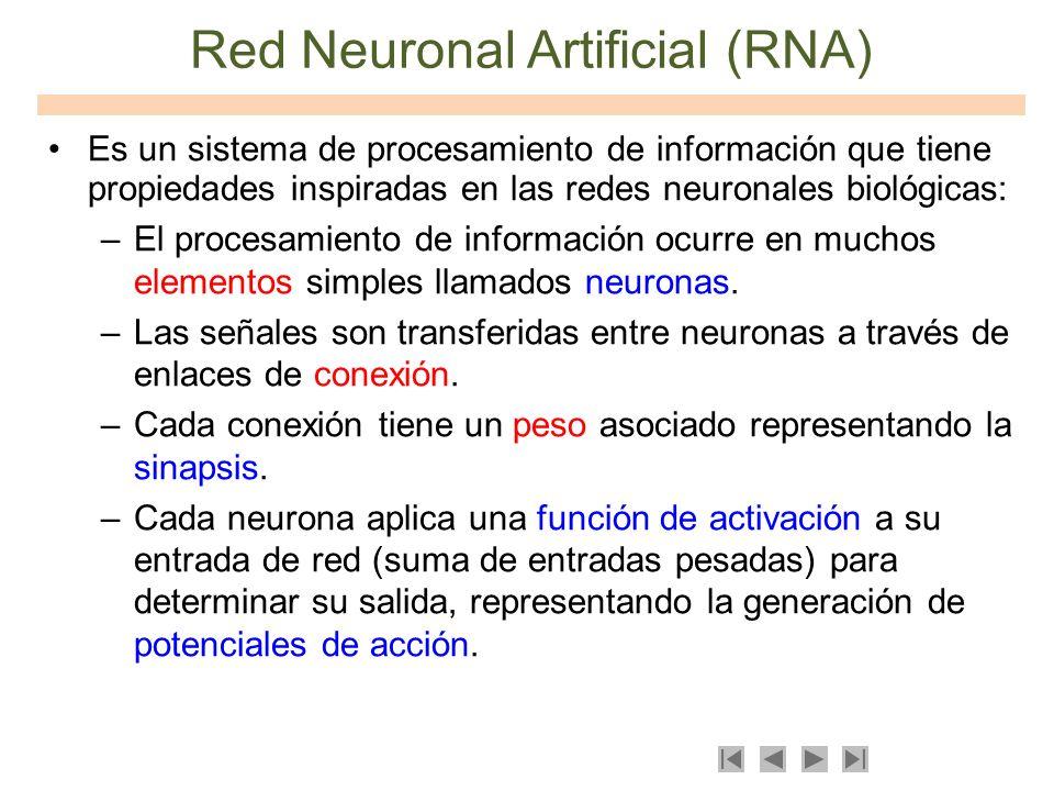 Red Neuronal Artificial (RNA)