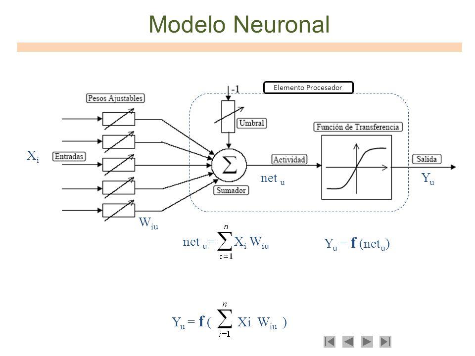 Modelo Neuronal Xi net u Yu Wiu net u= Xi Wiu Yu = f (netu)