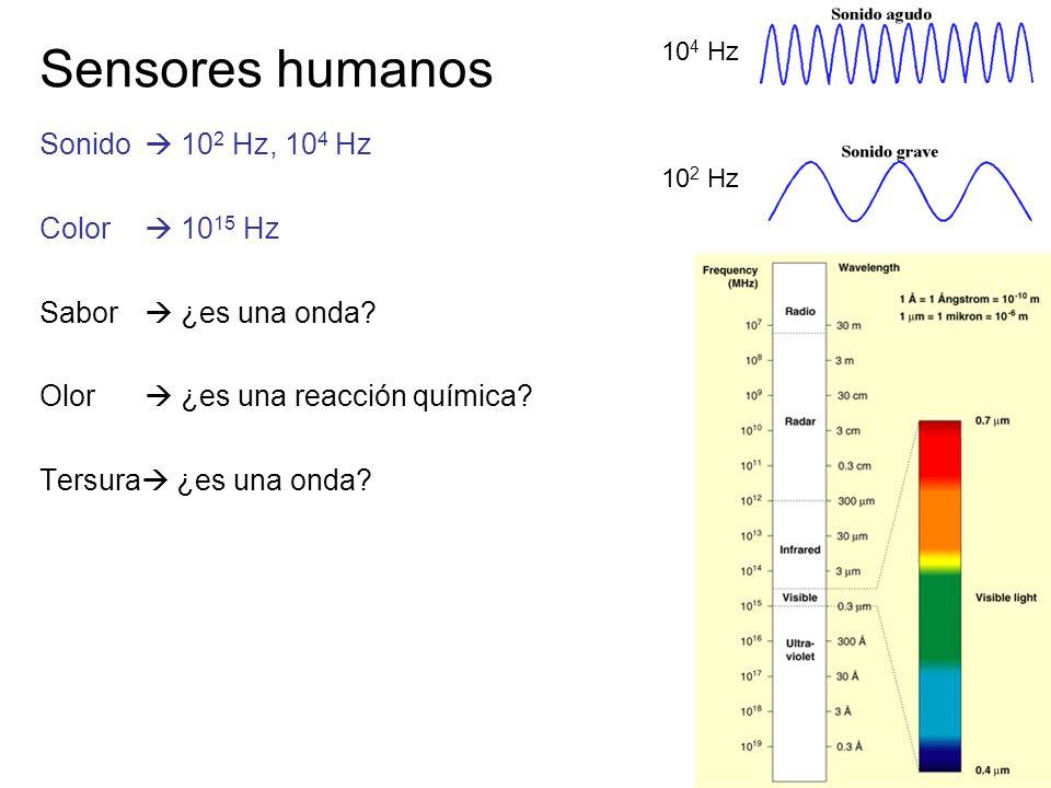 Sensores humanos Sonido  102 Hz, 104 Hz Color  1015 Hz