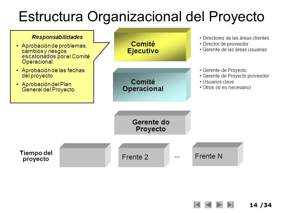 Estructura Organizacional del Proyecto