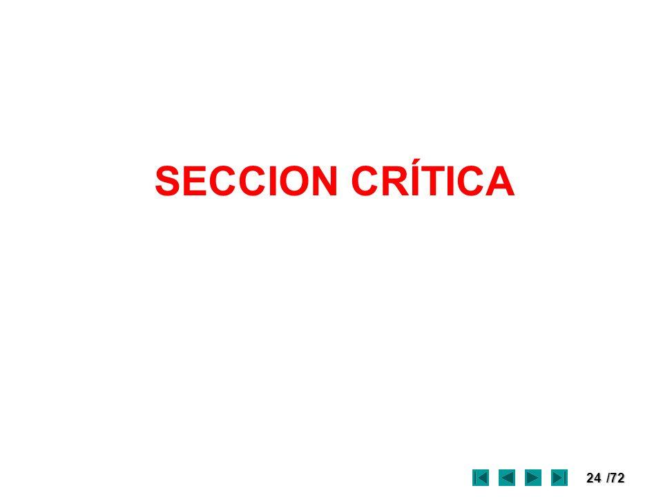 SECCION CRÍTICA