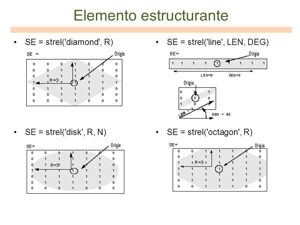 Elemento estructurante