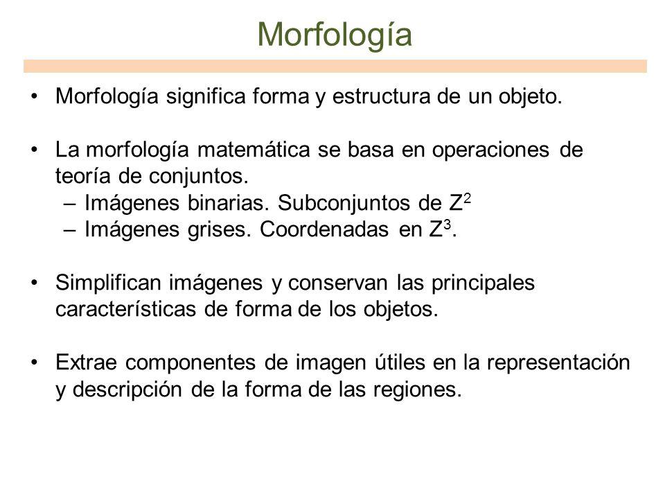 Morfología Morfología significa forma y estructura de un objeto.