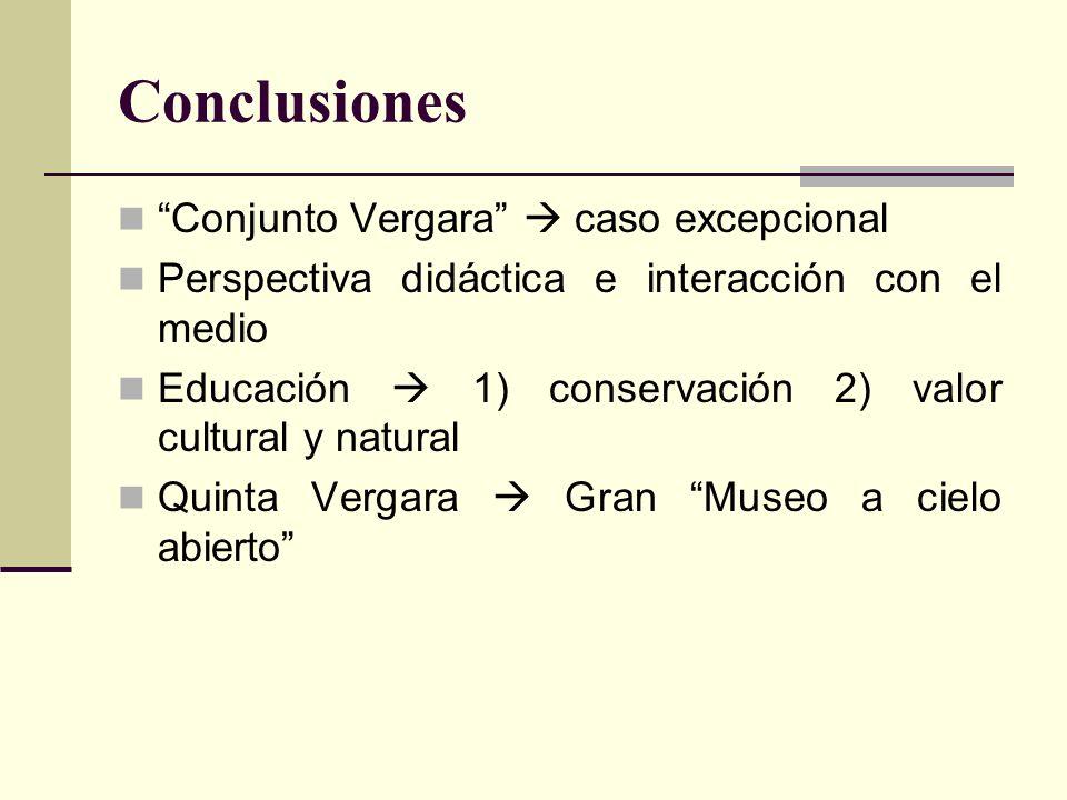 Conclusiones Conjunto Vergara  caso excepcional