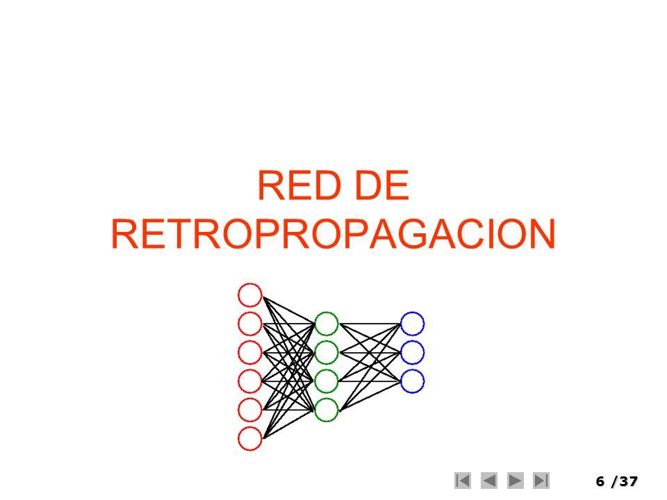 RED DE RETROPROPAGACION