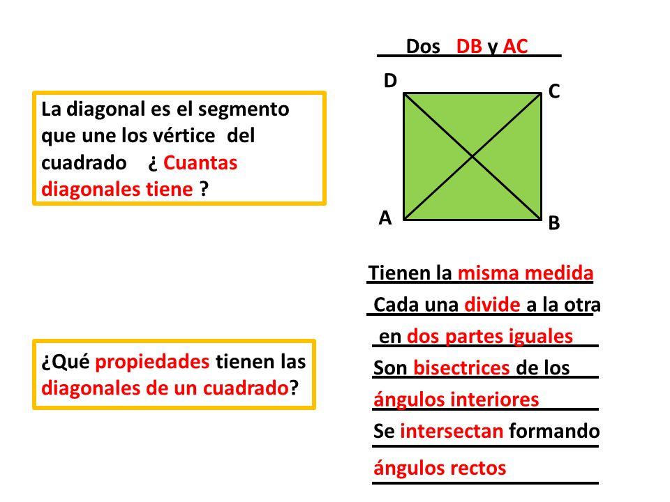 Dos DB y AC A. D. B. C. La diagonal es el segmento que une los vértice del cuadrado ¿ Cuantas diagonales tiene