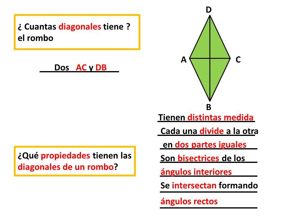 D C. B. A. ¿ Cuantas diagonales tiene el rombo. Dos AC y DB. Tienen distintas medida. Cada una divide a la otra.