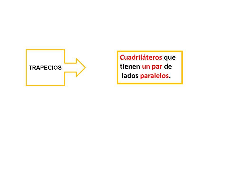 TRAPECIOS Cuadriláteros que tienen un par de lados paralelos.