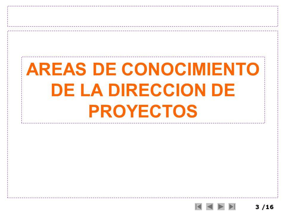 AREAS DE CONOCIMIENTO DE LA DIRECCION DE PROYECTOS