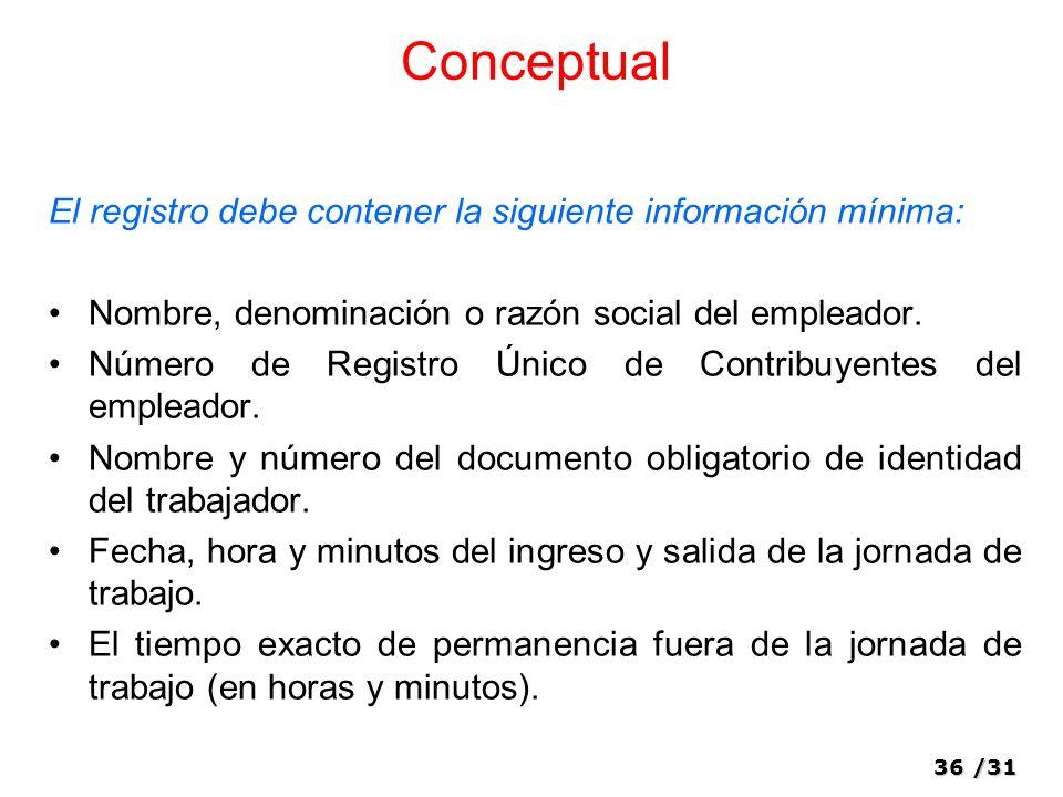 Conceptual El registro debe contener la siguiente información mínima: