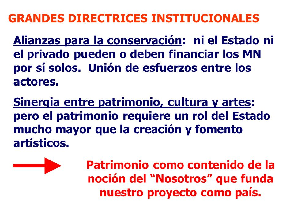 GRANDES DIRECTRICES INSTITUCIONALES