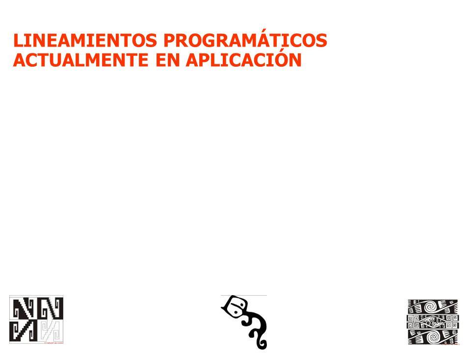 LINEAMIENTOS PROGRAMÁTICOS ACTUALMENTE EN APLICACIÓN