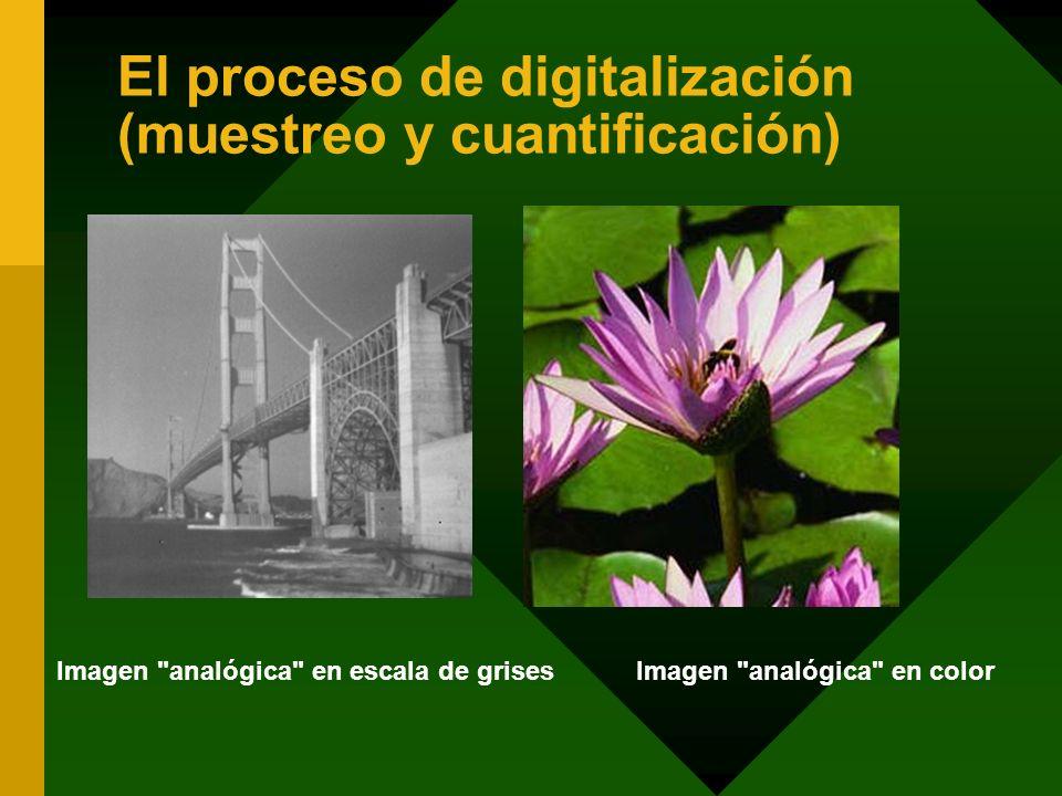 El proceso de digitalización (muestreo y cuantificación)