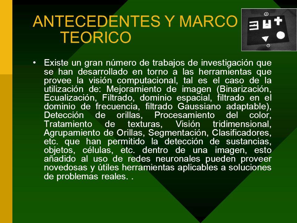 ANTECEDENTES Y MARCO TEORICO