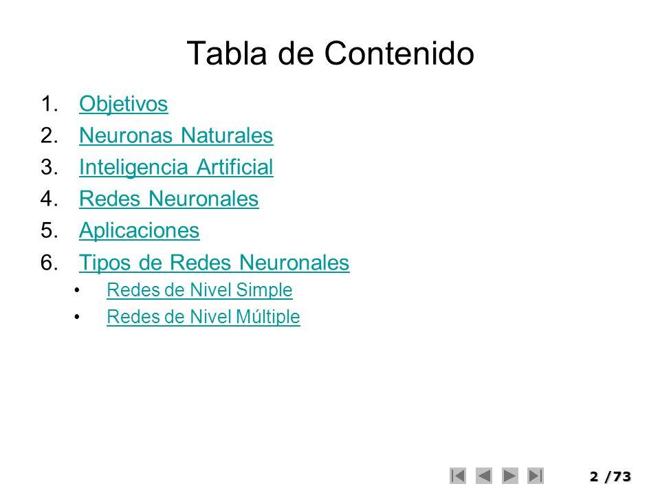 Tabla de Contenido Objetivos Neuronas Naturales