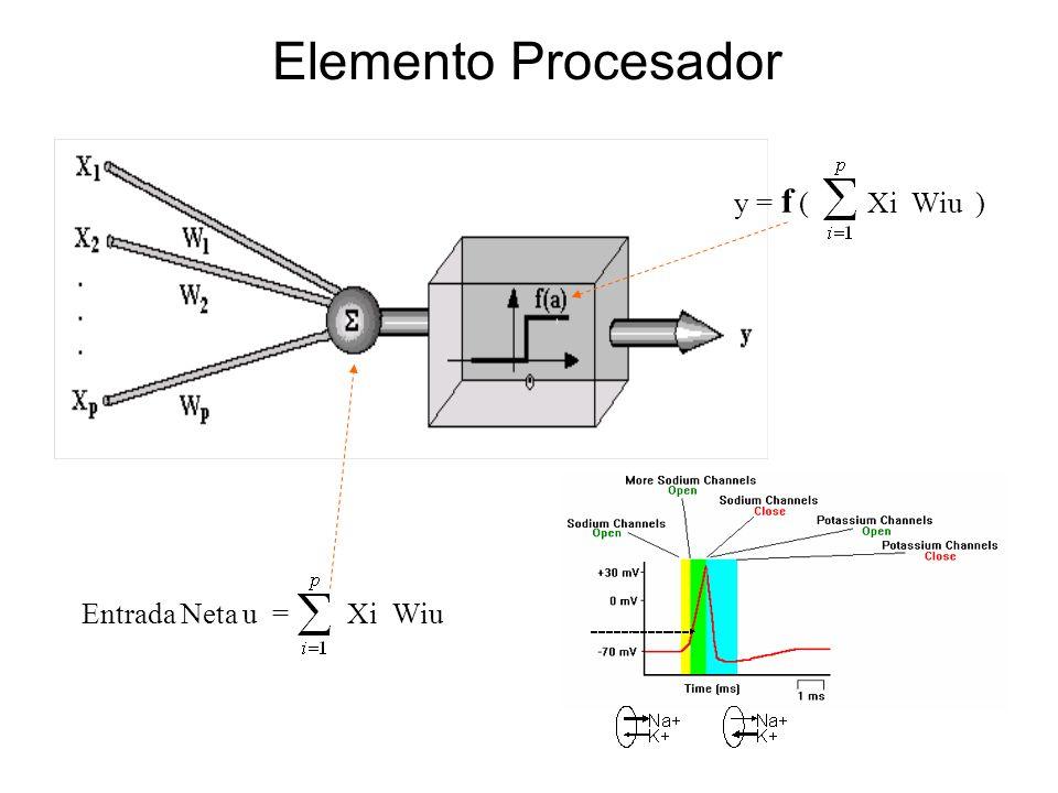 Elemento Procesador y = f ( Xi Wiu ) Entrada Neta u = Xi Wiu