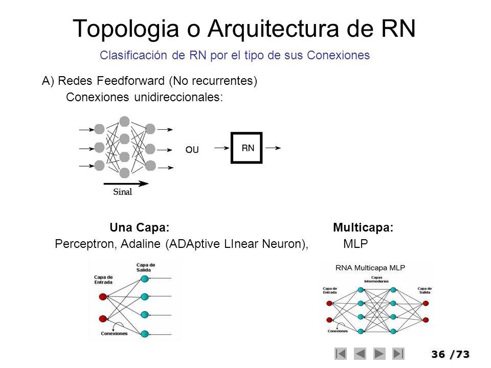 Topologia o Arquitectura de RN
