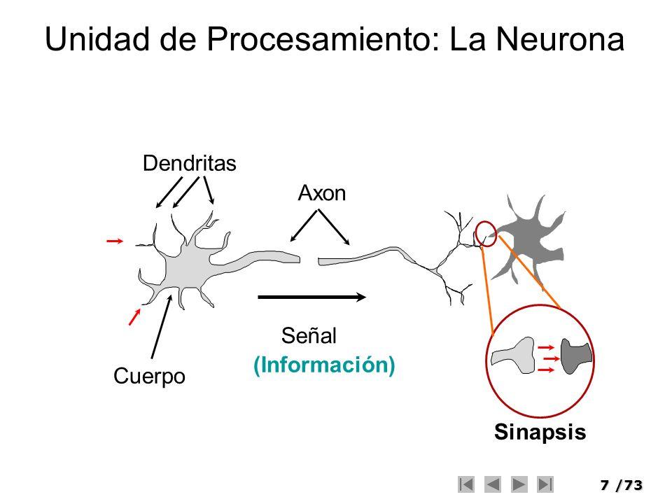 Unidad de Procesamiento: La Neurona