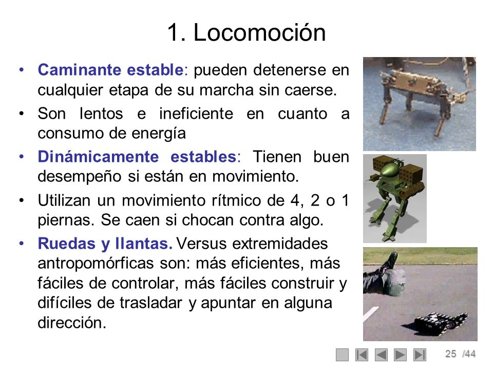 1. Locomoción Caminante estable: pueden detenerse en cualquier etapa de su marcha sin caerse.