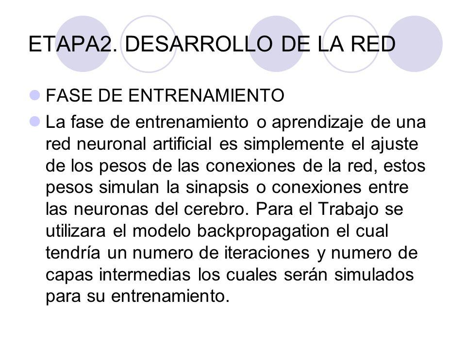 ETAPA2. DESARROLLO DE LA RED