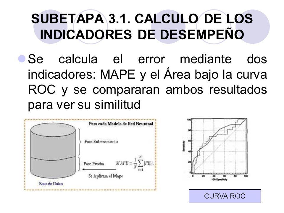 SUBETAPA 3.1. CALCULO DE LOS INDICADORES DE DESEMPEÑO