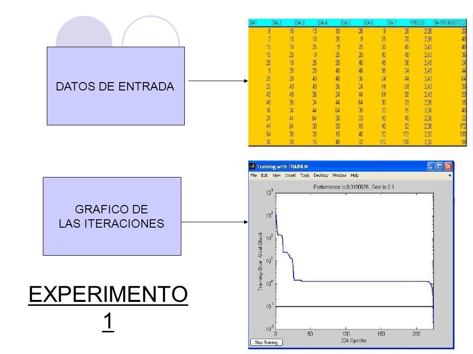 DATOS DE ENTRADA GRAFICO DE LAS ITERACIONES EXPERIMENTO 1