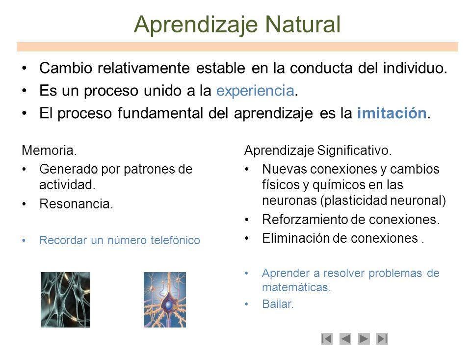 Aprendizaje Natural Cambio relativamente estable en la conducta del individuo. Es un proceso unido a la experiencia.