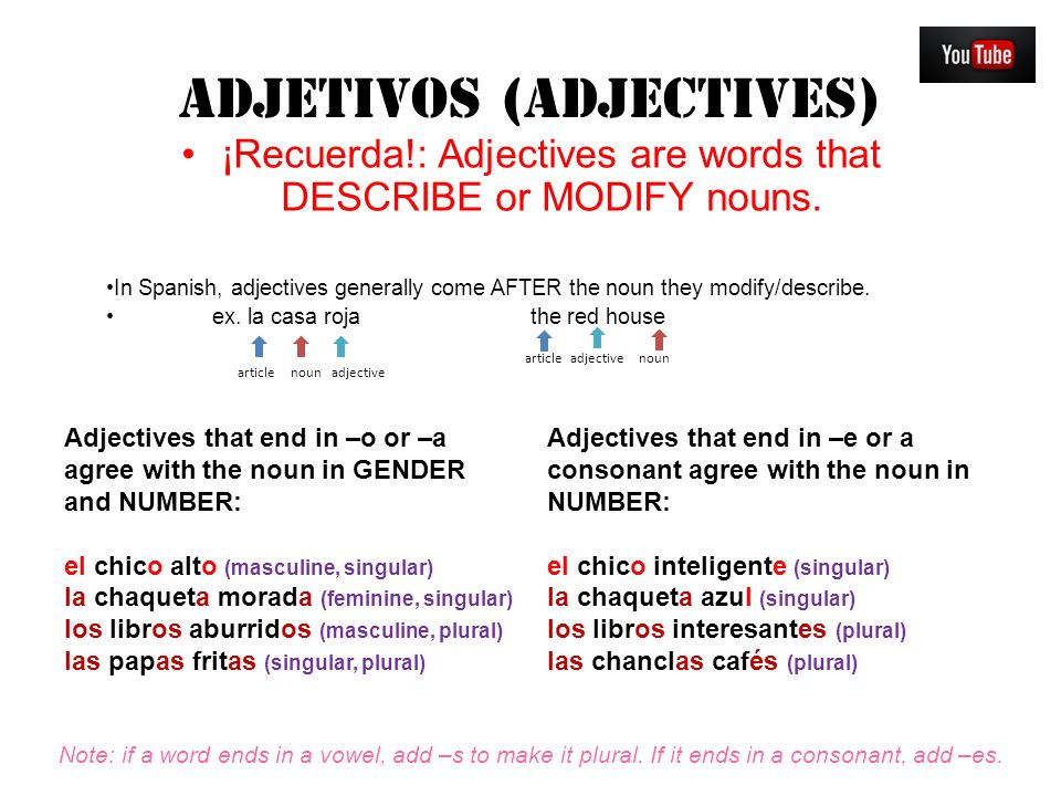 Adjective Noun Agreement Spanish Gallery Agreement Letter Format