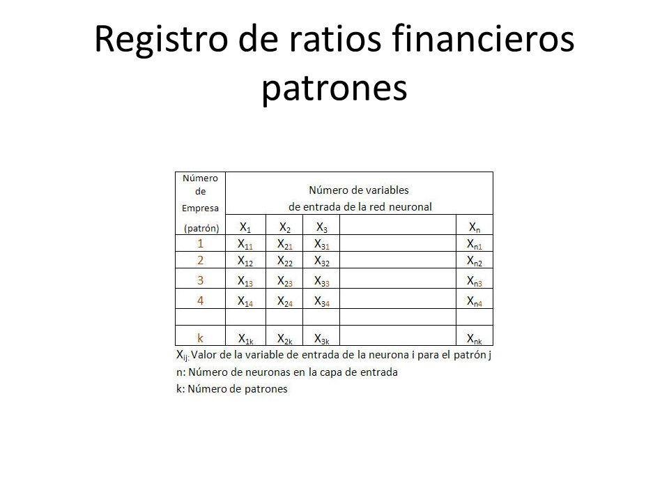 Registro de ratios financieros patrones