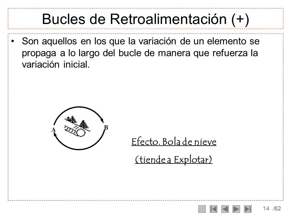 Bucles de Retroalimentación (+)
