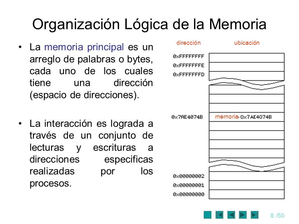 Organización Lógica de la Memoria